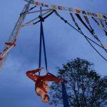 zele-d'anges-festival-bitume-plumes